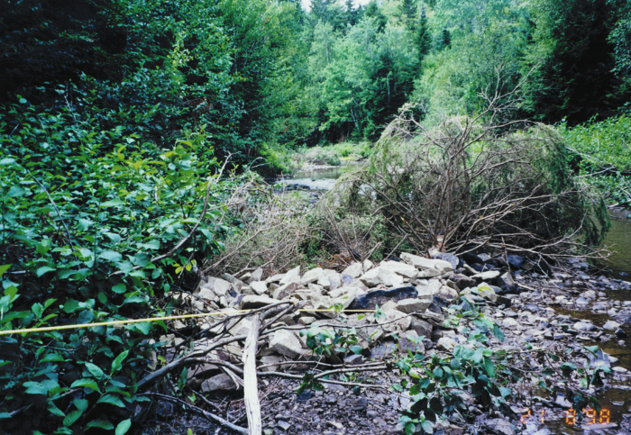 Fish habitat restoration structure in the Black river
