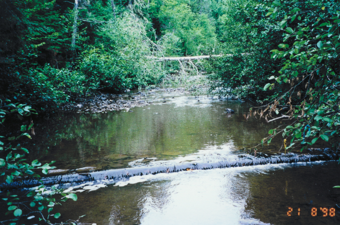 Fish habitat restoration structure in the Mill creek stream