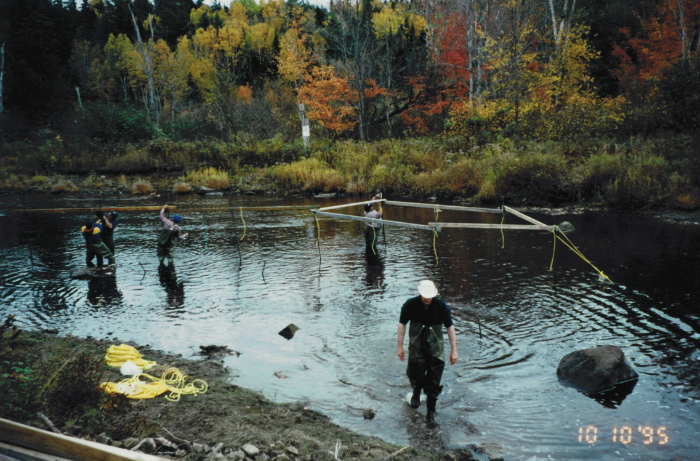 Atlantic Salmon counting fence on the Bouctouche River