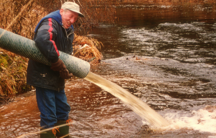 Trout stocking in the Bouctouche River
